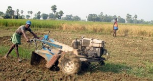 Farm Workers in Bihar, Home of the Mushar people